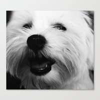 terrier Canvas Prints featuring Terrier by liberthine01