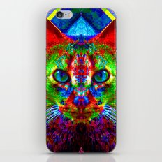Sir Parker the Chromatic Cat iPhone & iPod Skin