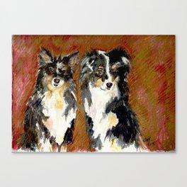 Two Australian Sheep Dogs Canvas Print