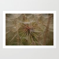 The Heart of a Dandelion Art Print