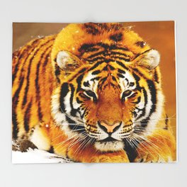 Siberian Tiger Throw Blanket