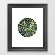 Planetary Bodies - Spikes Framed Art Print