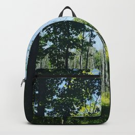 Wetlands in Full Swing from The Magic Glamp in Argyle Upstate New York Backpack