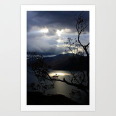 Nature's Spotlight Art Print