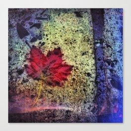 Fall Maple Canvas Print