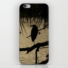 Heron Silhouette iPhone & iPod Skin