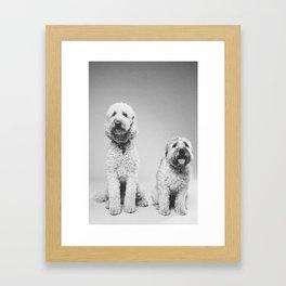 pooches Framed Art Print