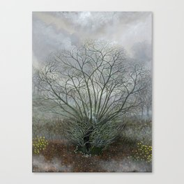 Bella in the Wych Elm Canvas Print