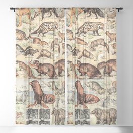 Cute Animals // Fourrures by Adolphe Millot XL 19th Century Science Textbook Diagram Artwork Sheer Curtain