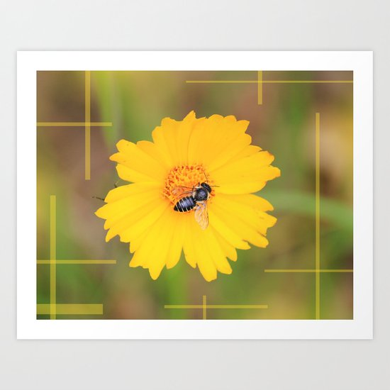 The Bee And The Flower Art Print