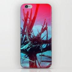 Weathered Lore II iPhone & iPod Skin