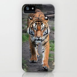The Bengal Tiger iPhone Case