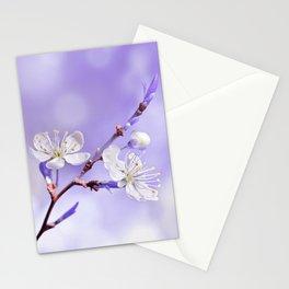 Spring 216 Stationery Cards