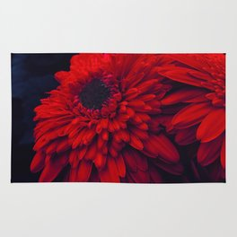 Red Flowers at Night (Color) Rug