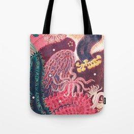 Sea Cucumber Trepang Vintage Sealife Illustration Tote Bag
