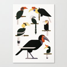 Hornbills  Canvas Print