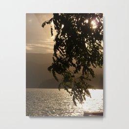Green Leaves at Sunset Metal Print