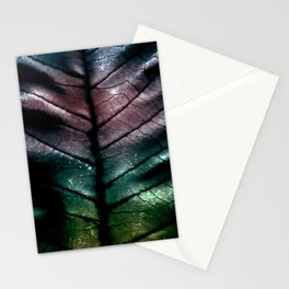 Wounded Dragon Stationery Cards