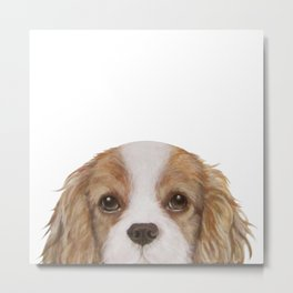 Cavalier King Charles Spaniel Dog illustration original painting print Metal Print