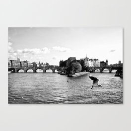 Co-Incidence Canvas Print