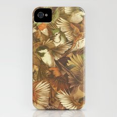 Red-Throated, Black-capped, Spotted, Barred iPhone (4, 4s) Slim Case