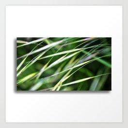 Grass-Scape Art Print
