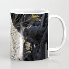 Mm Cheezy Coffee Mug