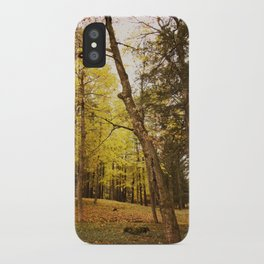 The Last Days of Grace iPhone Case