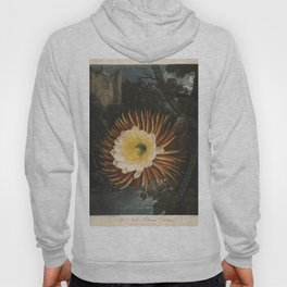 Reinagle, P. (1749-1833) & Pether, A. 1763-1812) - The Temple of Flora 1807 - Cereus Hoody
