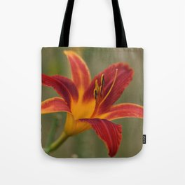 Orange Daylily Tote Bag