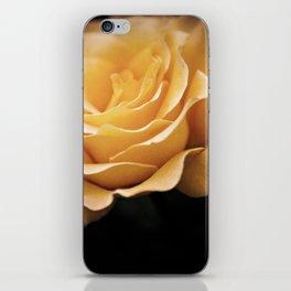 Lady Rowena- Golden Rose  iPhone Skin