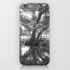 Wishing tree  iPhone 6 Slim Case