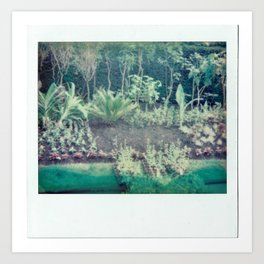 Greenery in a London Park Art Print