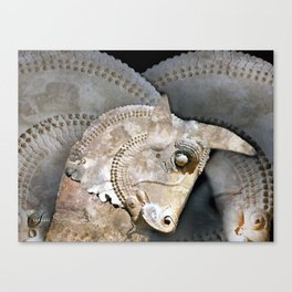BULL HEAD Canvas Print