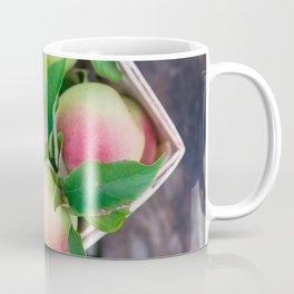 Apples for Pie Coffee Mug