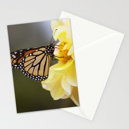 Longwood Gardens Autumn Series 406 Stationery Cards