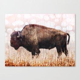 Boho Buffalo Canvas Print