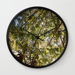 Redwood Ceiling  Wall Clock