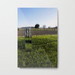 Mirrored Trees Metal Print