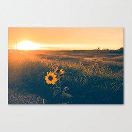 Saskatchewan Harvest Sunset Canvas Print
