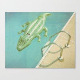 Alligator Ladder Canvas Print