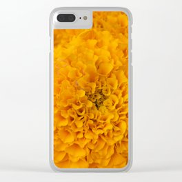 Golden Marigold Flowers Close up Clear iPhone Case