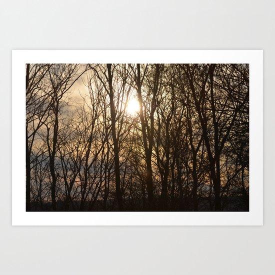 Iowa Winter Sun Art Print