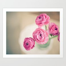 Ranunculus in Morning Light Art Print