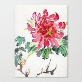 Paeonia suffruticosa Canvas Print