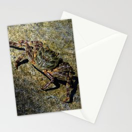 Little Creature Poses 2 Stationery Cards