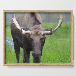 Bullwinkle Bull Serving Tray