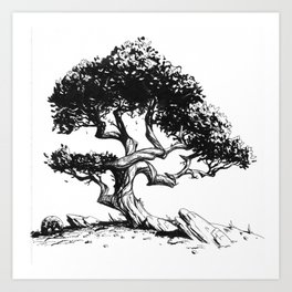 Twisting Tree Art Print