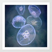 jellyfish Art Prints featuring jellyfish by  Agostino Lo Coco