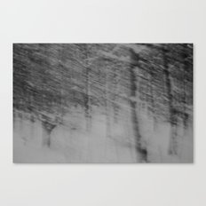 {come closer and see, see into the trees} Canvas Print